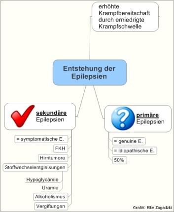 Entstehung der Epilepsien