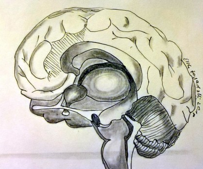 Gehirn, 2018