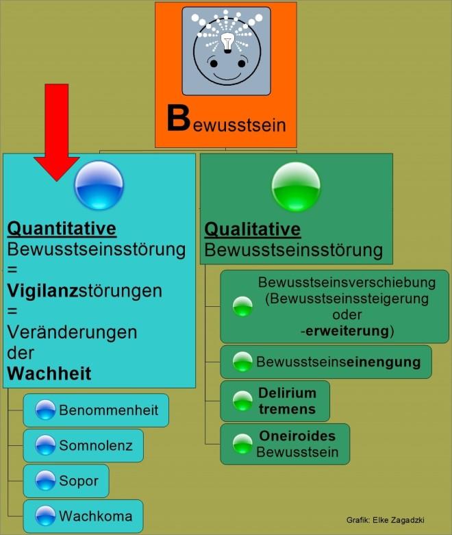 1.2.Quantitative BWS störungen